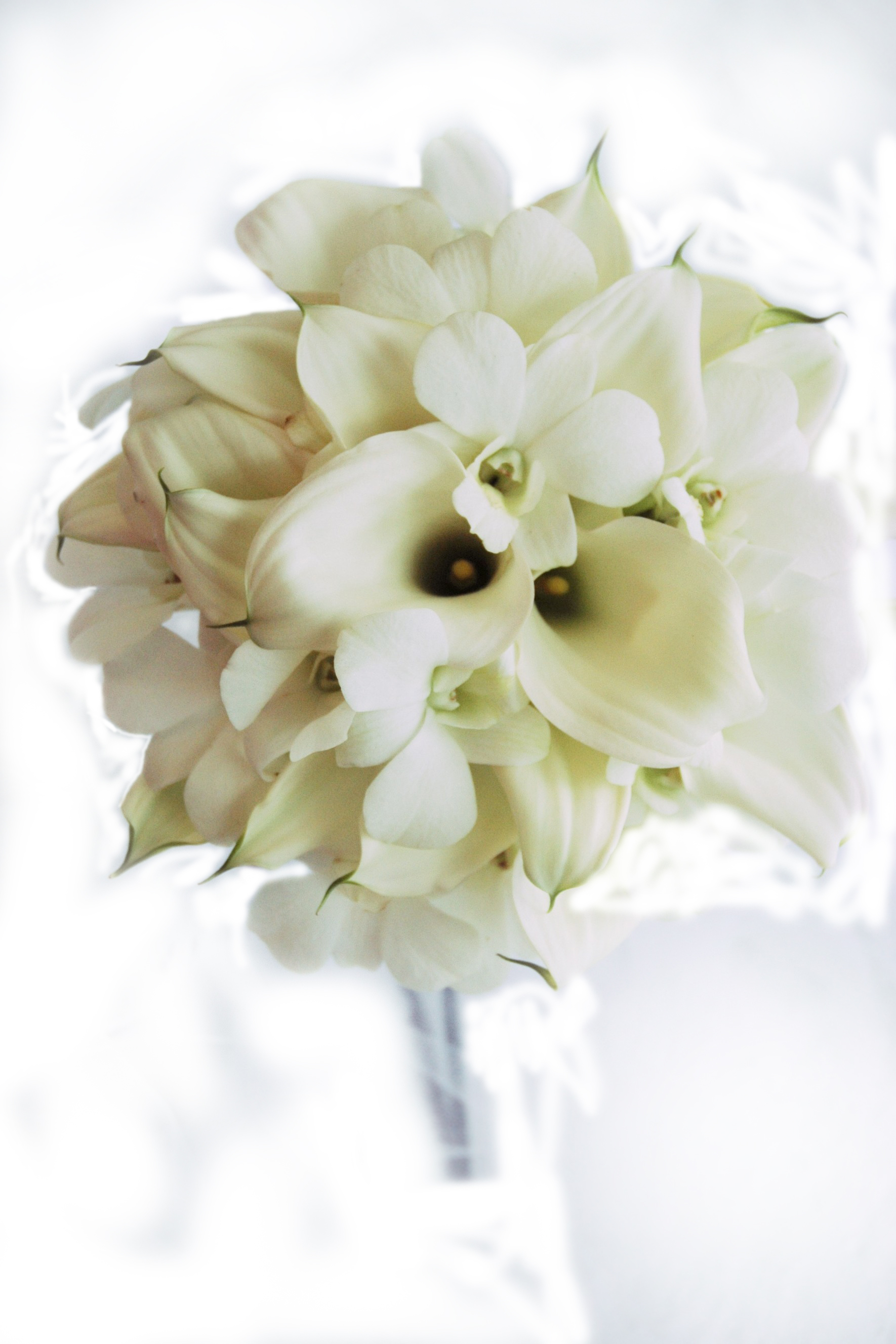 Lily Bouquets By Bridal Dream Hawaii