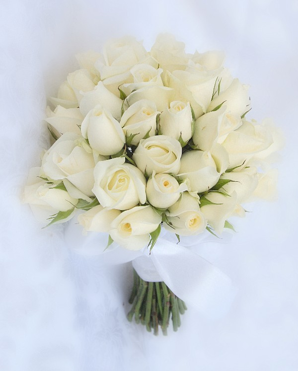 White Rose Handtied